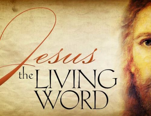 Jesus the revealed Word: An Exegesis of John 1:1, 18 by Pastor Rudolph Boshoff